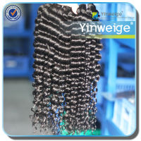 Cheap Best Quality Hot Wholesale Indian Remy Hair Curly Weave Weft