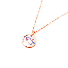 Zirconia 925 Sterling Silver 12 Constellations Horoscope Pendant Zodiac Necklace Jewelry for Women and Men