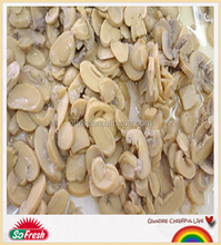 wholesale cheap canned food canned pieces and stems mushroom
