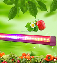 Shenzhen LED grow light high efficiency t8 blue and red plant light tube 4ft 18w t8 led grow light