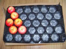China made Frosted Stackable Fruit Tray
