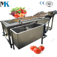 Industrial Vegetable Tomato Apple Strawberry Dates Washer Machine Fruit Washer Price