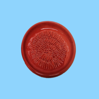 Custom Wholesale Ceramic Red Garlic Grater Plate