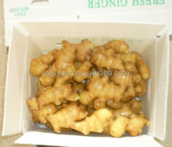 2017 New crop ginger 100g and up