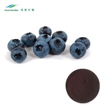 Natural Blueberry Juice Concentrate Brix 65