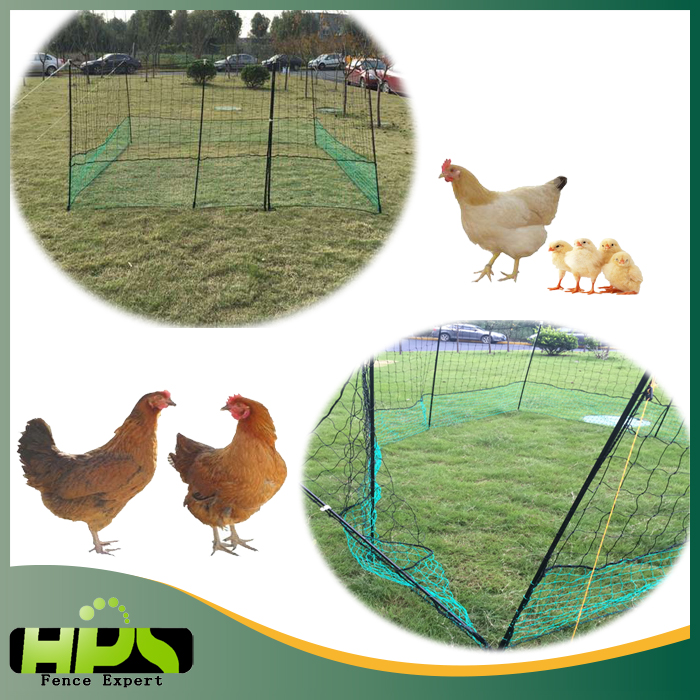 Hot sales Wire Netting/Chicken Wire Netting/Plastic poultry fence netting