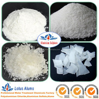 Aluminium Sulfate Water Treatment Chemicals Manufacturer
