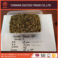 New wholesale super quality fresh coffee bean