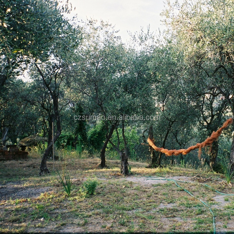 Low price new products net for olive tree