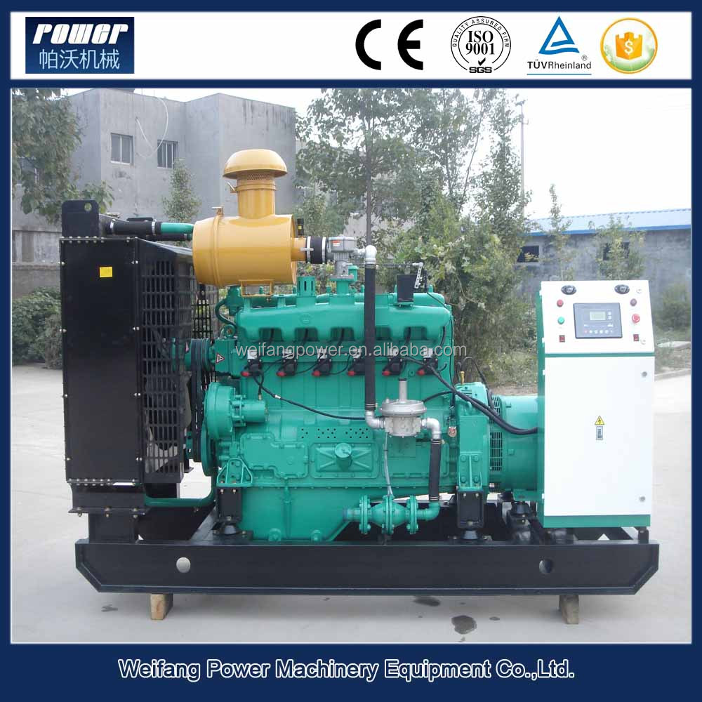 Hot sale 40kw bio electric generator,LPG/CNG/biogas as fuel