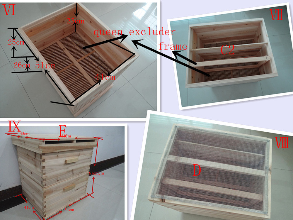 Professinal supply plastic frames and beehive