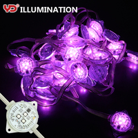 IP68 waterproof factory direct rgb led running christmas light for holiday decoration