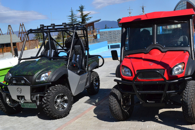 New side by side utv buggy