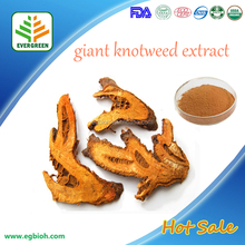 Resveratrol Giant Knotweed Extract , CAS:501-36-0,Resveratrol Bulk Powder