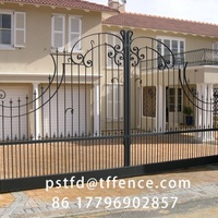 Luxury Wrought Iron Gate Decoration Indian
