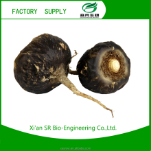 SR Free Sample Sex Product For Man/women Black Maca Extract Medicine For Long Time Sex Maca Root ExtractPowder/black Maca ExtraT