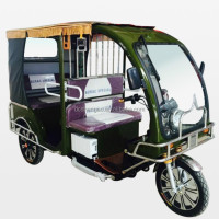 2015 new type new auto rickshaw in Delhi made in China;e-rickshaw