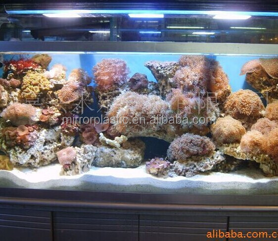 Transparent Cast Acrylic Aquarium of Oceanarium