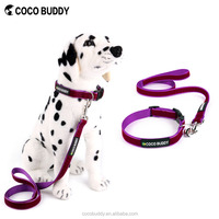 Wholesale Padded Comfort Handle Violet Velvet Woven Brand Dog and Leash