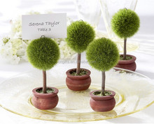 Potted plant Tree photo frame Place Card holder for wedding party decoration