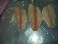 FROZEN TILAPIA FILLET SKINLESS