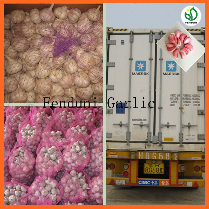 China White Fresh Garlic Small Packaging 6p/5p/4p/3p/2p/1p garlic