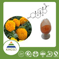 lutein (plant extract) 5% 10% 20% 40% 80% 90%