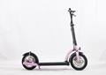 12 inch tire 10AH 36V 300w electric scooter