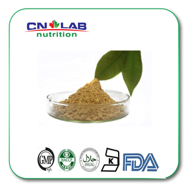 White willow bark extract Salicin Salix Babylonical Extract
