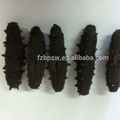 Best price of blake dried sea cucumber,trepang,dried seafood for health,