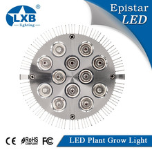 Highest Efficient Hydroponic LED Grow Light, E27 Growing Lamp For Garden Greenhouse in 12w in Best 3 Bands Growing Combination