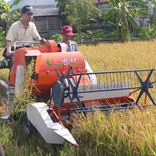 self-propelled rice harvest machine used as grass harvesting machine