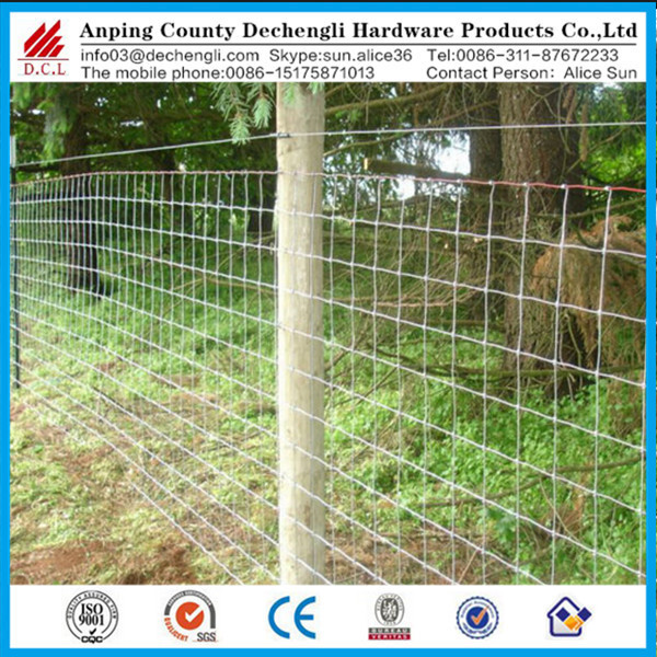 Horse paddock fence/farm/grassland wire mesh fence