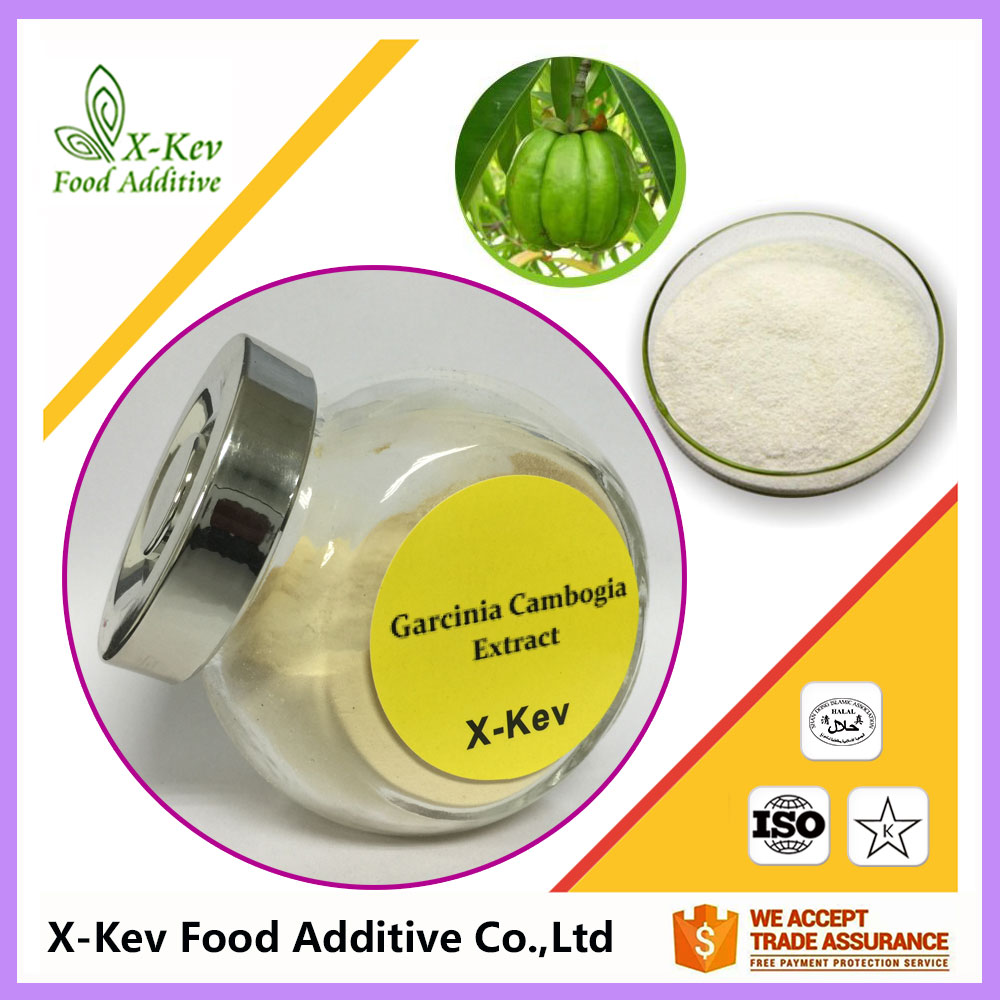 Wholesale Garcinia Cambogia Extract Manufacturers 80% Hydroxycitric acid
