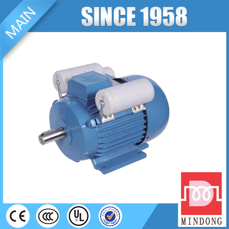 YL Series Single Phase Dual-Capacitor Induction Motor