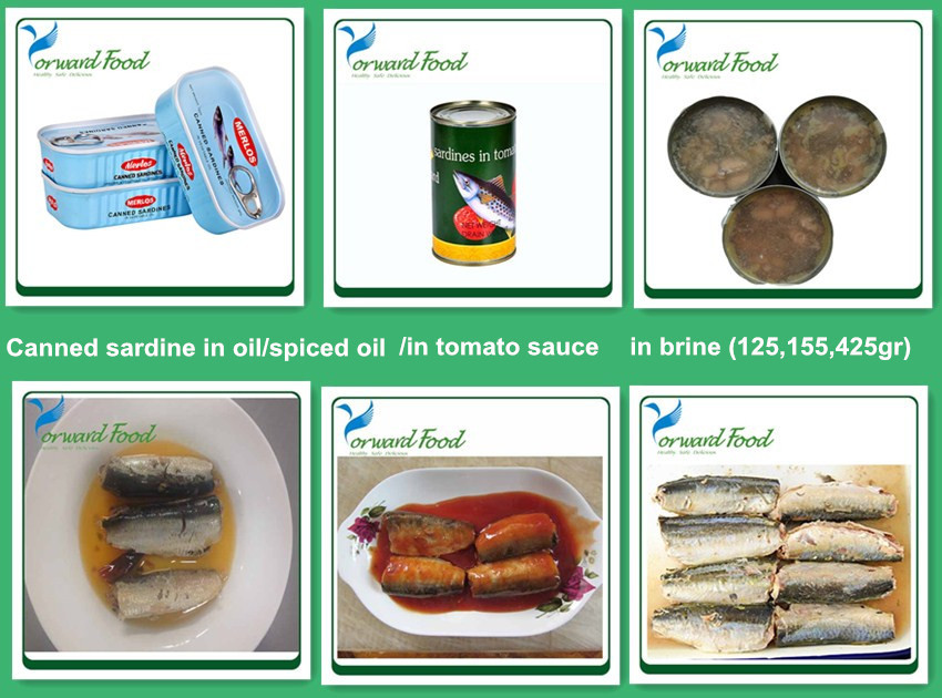 125g easy open lid sardine in vegetable oil canned