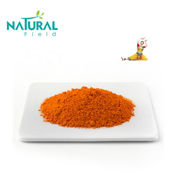 Manufacturer supply turmeric extract curcumin 95% for pain relief