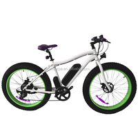 front frok electric mountain bike with tube battery/stealth bomber electric bike/fat tire mountain e-bike