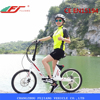 /product-detail/fujiang-2015-fj-tdm14-250w-small-rear-wheel-brushless-electric-bicycle-motor-60315708655.html