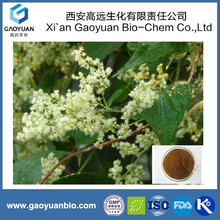 Traditional Chinese Medicine Jiao Teng Extract with Raw Material to Sex Products for Men