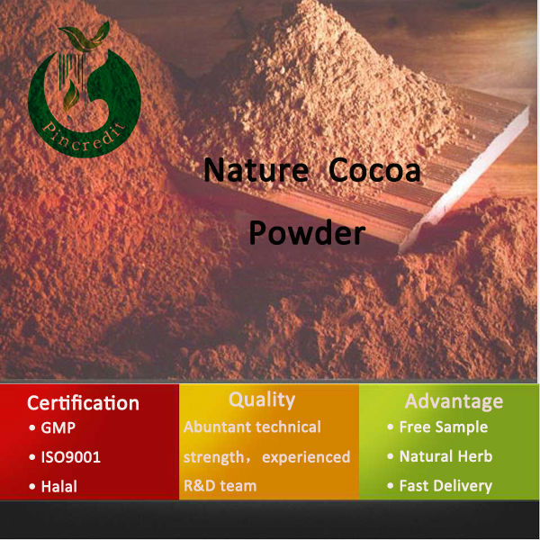 Top Quality Low Price Cocoa Seed Extract 100% Natural Cocoa Powder