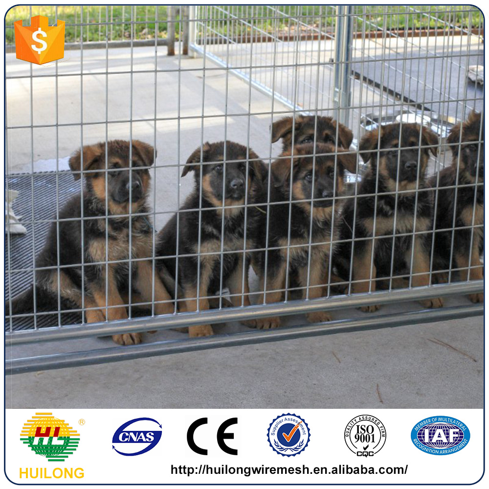 Heavy Outdoor Welded Mesh Dog Kennel House Cages Manufacturer