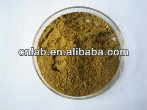 GMP factory hawthorn berry leaf extract
