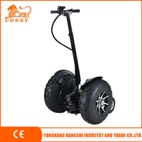 21inch wheel 500w*2 48v 12ah off road electric scooter SW01