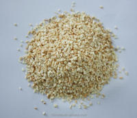 Chinese EU Standard Bulk Organic Air Dried natural Garlic Granules