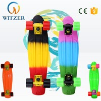 Wholesale color attachable wheels 22 Inch fish board skateboard shoes