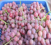 Typical sweet crimson seedless grape from original supplier
