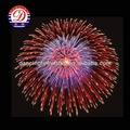 Wholesale Professional Display Shell Fireworks Suppliers