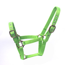 Wholesale Nylon Horse Halter Manufacturer for Pony Cob Full Ex-Full Horse