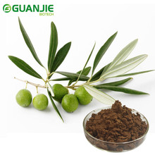 High Quality Health Care product olive leaf extract Hydroxytyrosol